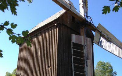 Windmühle Borne