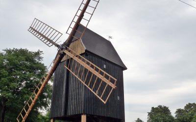 Windmühle Brehna